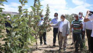 Başkan Yalçın'dan bilinçli tarım teşviki