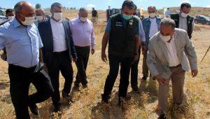 Cumhurbaşkanı Erdoğan'ın talimatının ilk hasadı Yalçın Başkan'dan