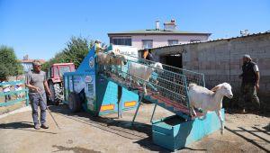 Talas'ın 'mobil koyun banyosu' bölgeye hizmet veriyor