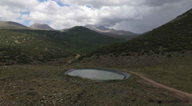 Büyükşehir 15 bin koyunu Erciyes'ten eriyen kar sularıyla rahatlattı