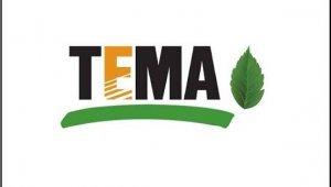 TEMA Vakfı Kocasinan Sorumlusu Esra Taş göreve başladı